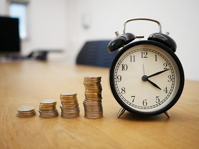 mince, budík, růst